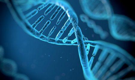 Αποκλειστική συνεργασία με την ΙΑΤΡΙΚΗ ΣΧΟΛΗ ΑΘΗΝΩΝ στον τομέα της Μοριακής Βιολογίας & Γενετικής